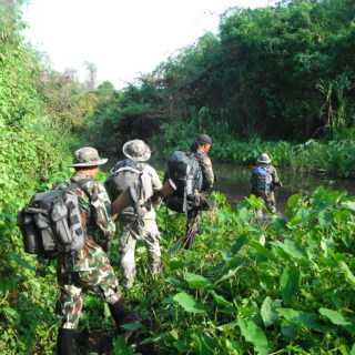 iv-kaeng-krachan-national-park-wildlife-conservation-society-thailand